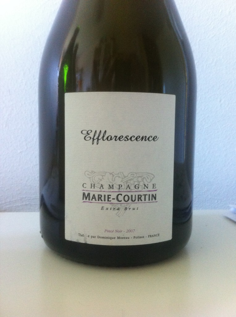 Marie Courtin Efflorescence 2007