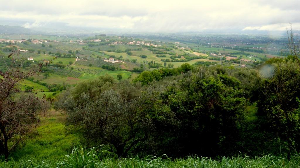 Blick von Montefalco